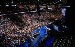 Democratic party faces functional issues following convention