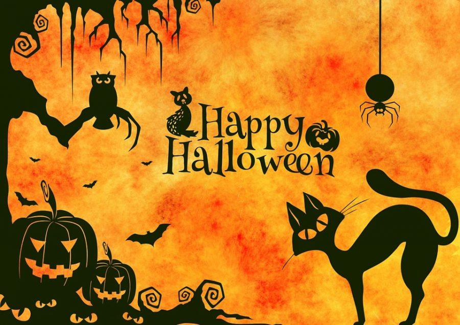 Too+old+to+trick-or-treat%3F+There%27s+plenty+to+do%21