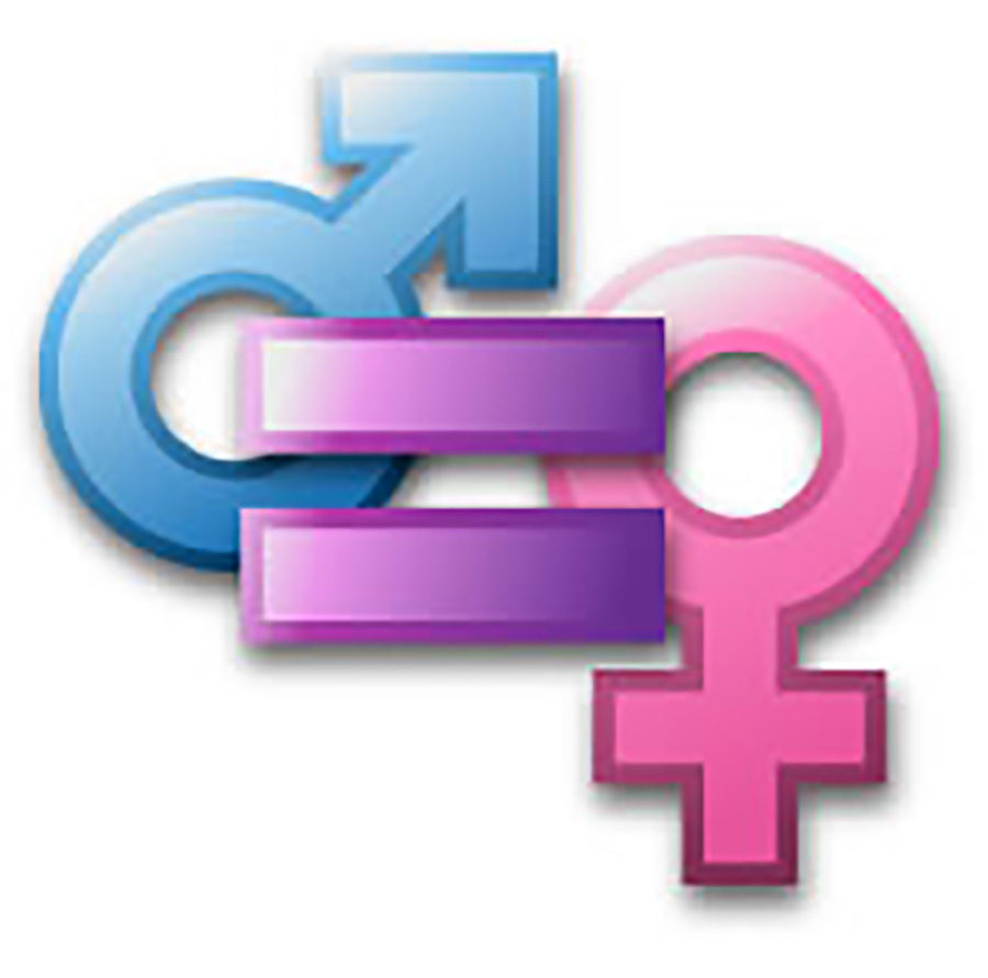 The+gender+equality+club+is+new+to+Neshaminy+High+School.+It+aims+to+raise+awareness+and+help+serve+the+community.