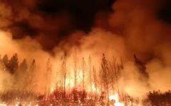 Wildfires Continue to Burn Australia