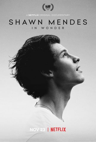 Canadian pop singer Shawn Mendes' new documentary shows that there