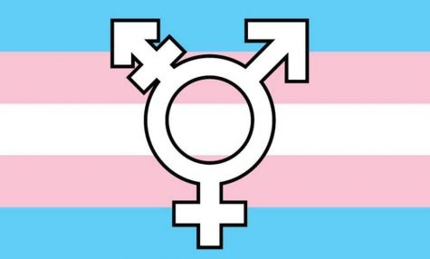 Opinion: Resources should be more accessible to trans youth